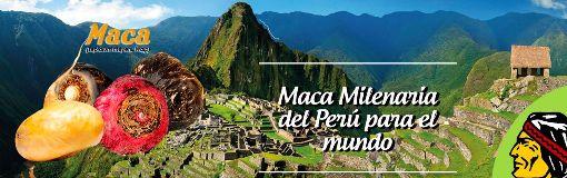 Fotos de Empresa Agroindustria Orgánico del Perú