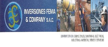 FEMA & COMPANY SAC. Lima