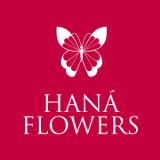 Haná Flowers Lima