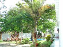 Foto de huanchaco gardens