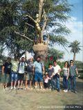 Foto de Oro Travel Peru Ica