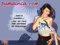 Foto de PUMAINCA.COM Arequipa