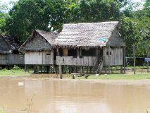 Foto de Turismo Mi Selva Querida Alto Amazonas