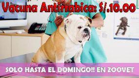 Foto de Veterinaria Zoovet Trujillo Trujillo
